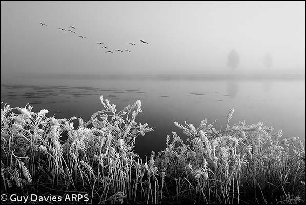 Frost at Alum Creek